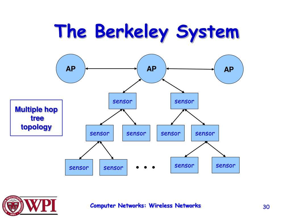 The Berkeley System