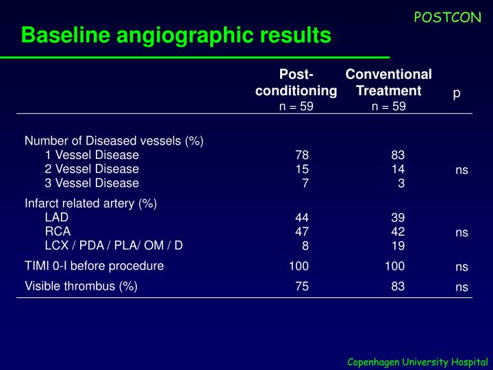 Baseline angiographic results