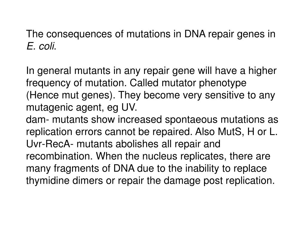The consequences of mutations in DNA repair genes in