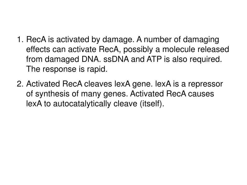 RecA is activated by damage. A number of damaging effects can activate RecA, possibly a molecule released from damaged DNA. ssDNA and ATP is also required. The response is rapid.