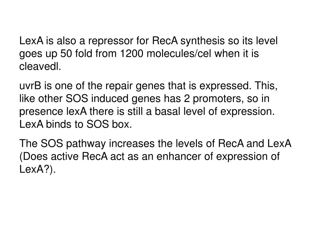 LexA is also a repressor for RecA synthesis so its level goes up 50 fold from 1200 molecules/cel when it is cleavedl.