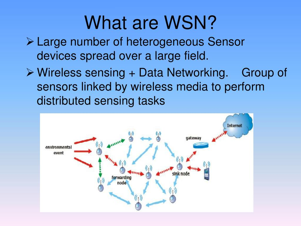 What are WSN?