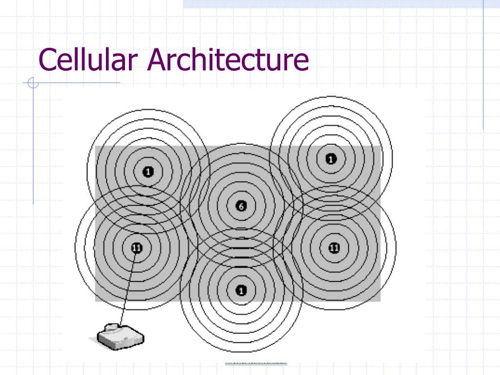Cellular Architecture
