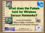 what does the future hold for wireless sensor networks
