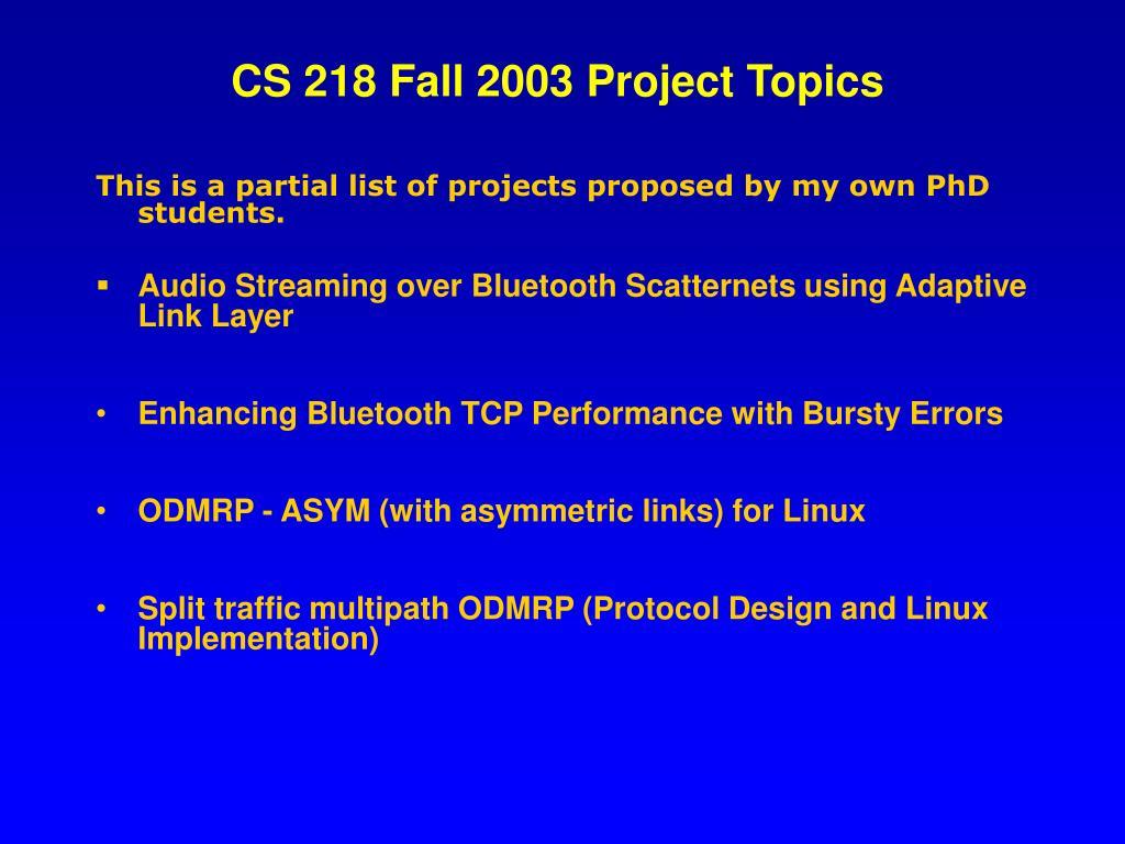 CS 218 Fall 2003 Project Topics