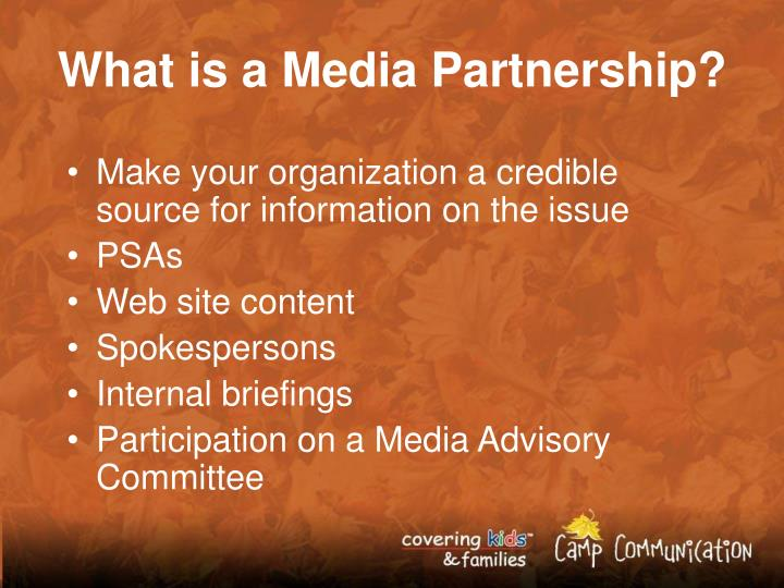 What is a Media Partnership?