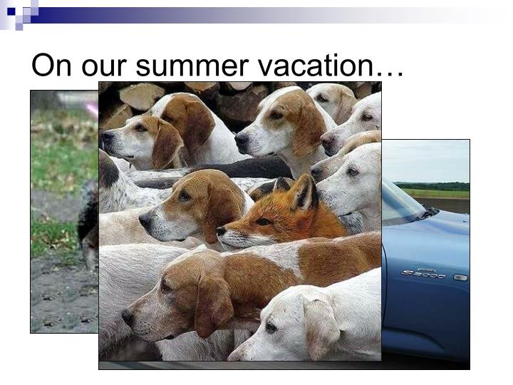 On our summer vacation…