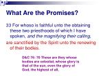 what are the promises