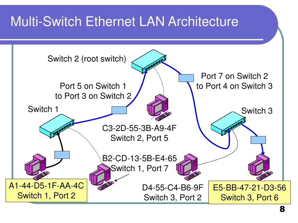 Multi-Switch Ethernet LAN Architecture