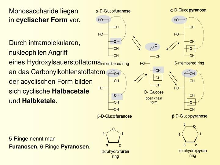 Monosaccharide liegen