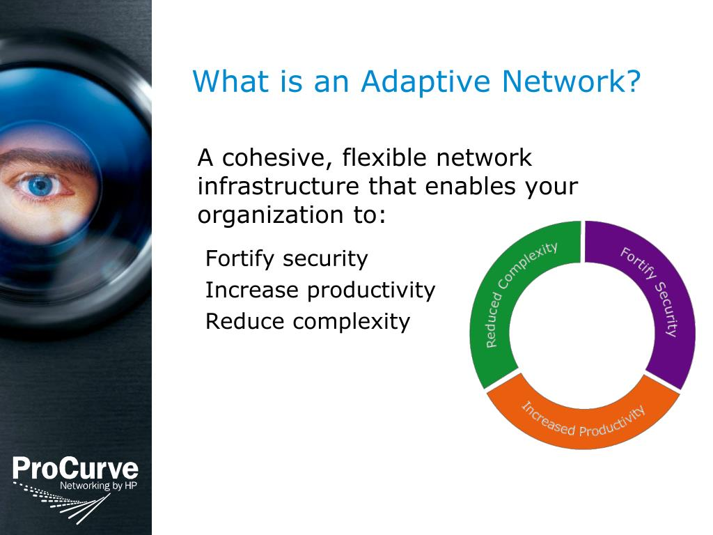 What is an Adaptive Network?