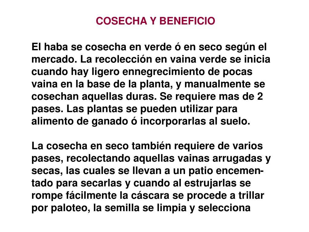 COSECHA Y BENEFICIO