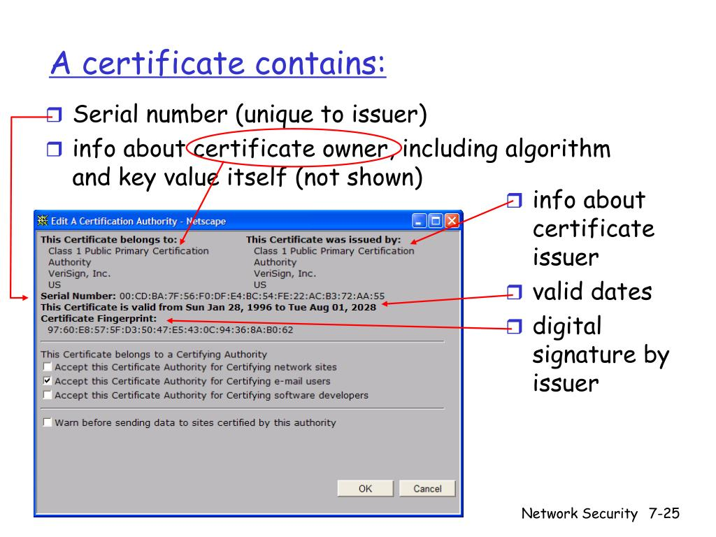 A certificate contains: