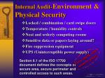internal audit environment physical security