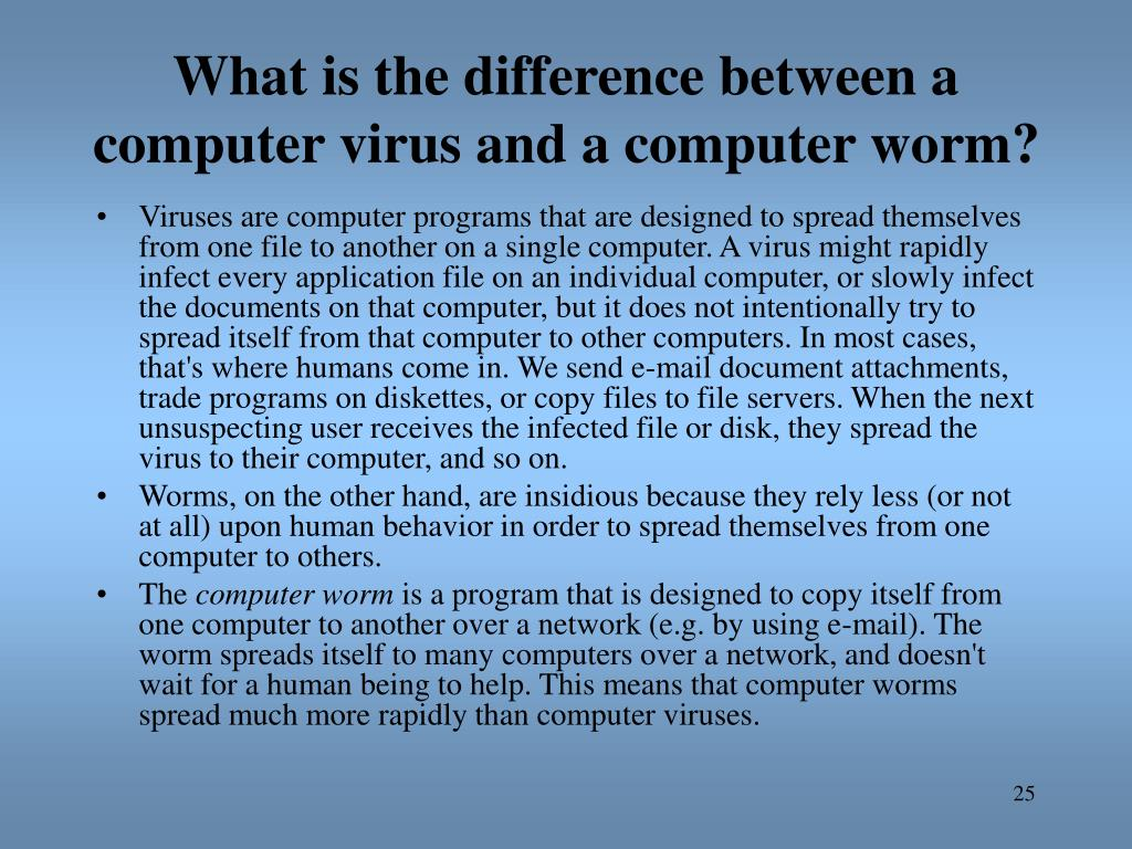 What is the difference between a computer virus and a computer worm?