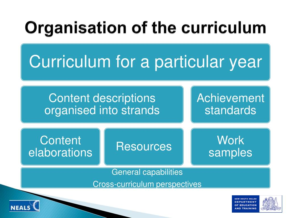 Organisation of the curriculum