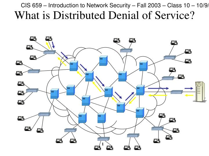 What is distributed denial of service