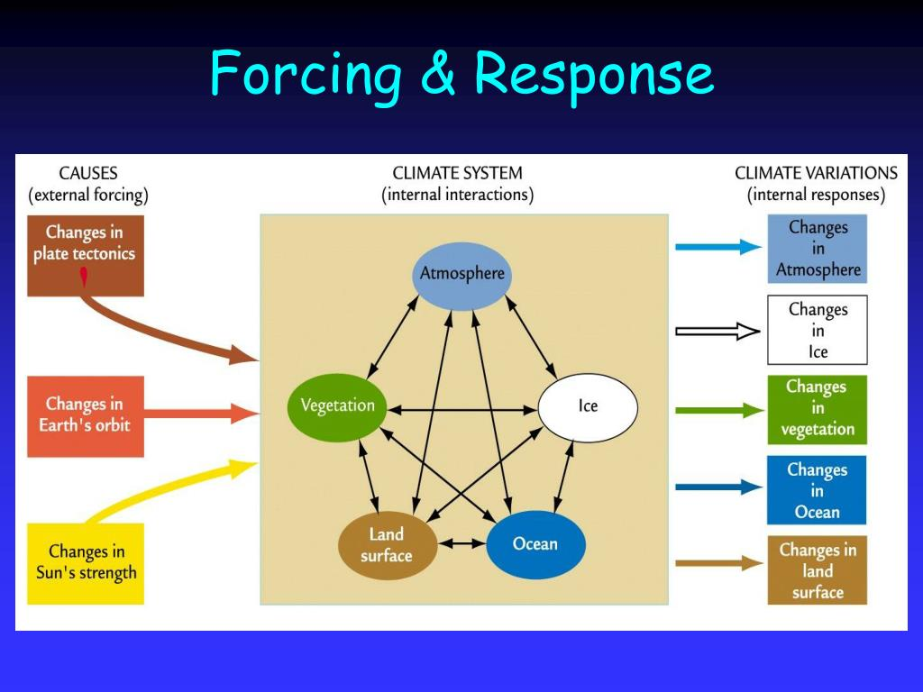 Forcing & Response