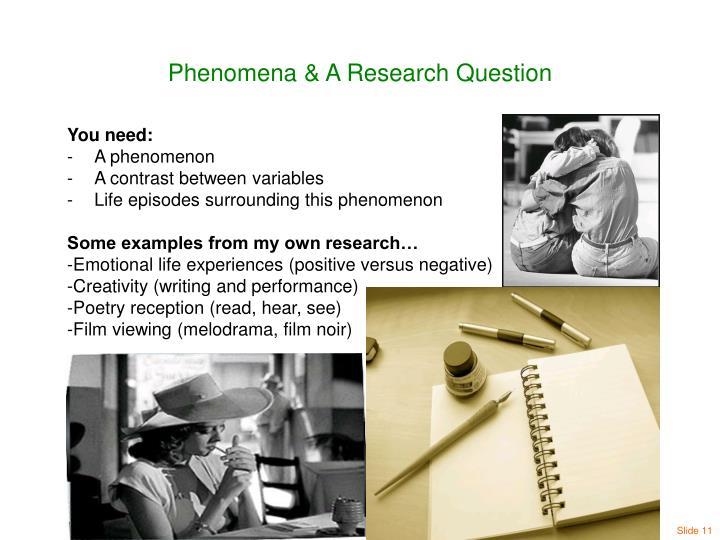 Phenomena & A Research Question