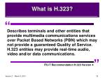 what is h 323
