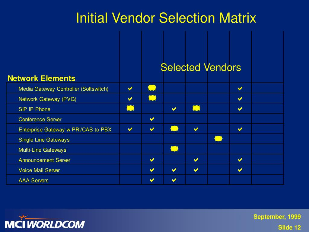 Initial Vendor Selection Matrix
