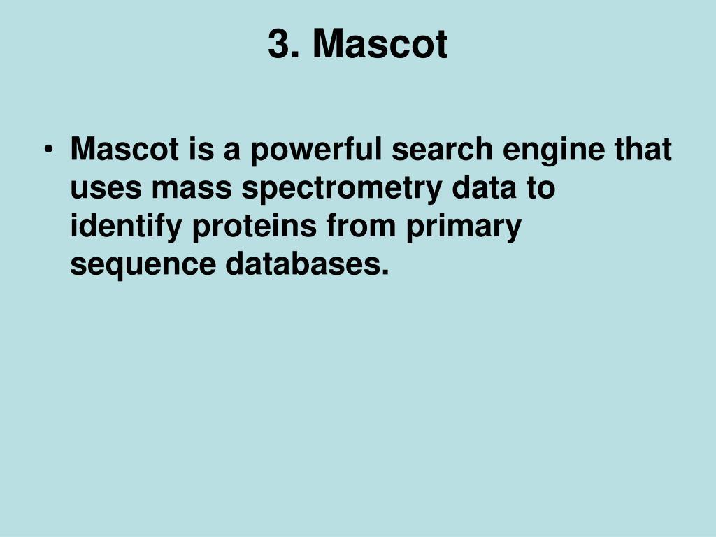 3. Mascot