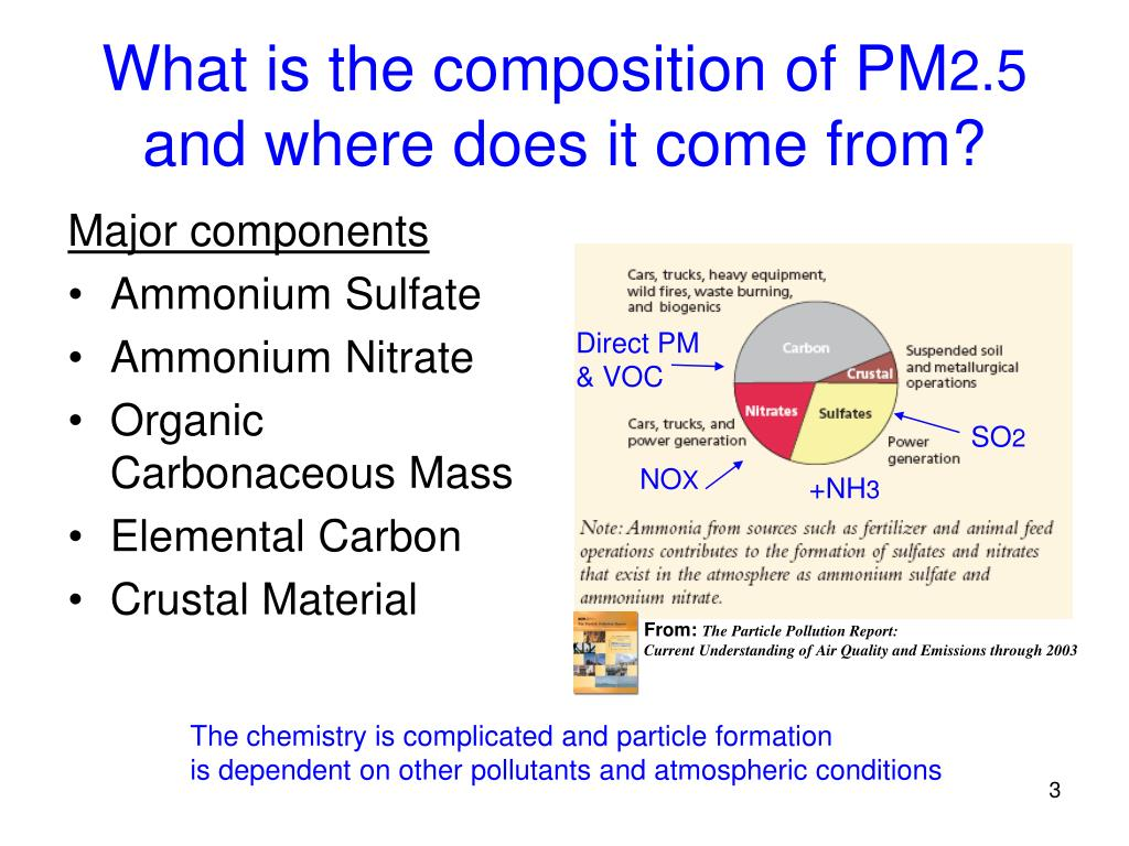 What is the composition of PM