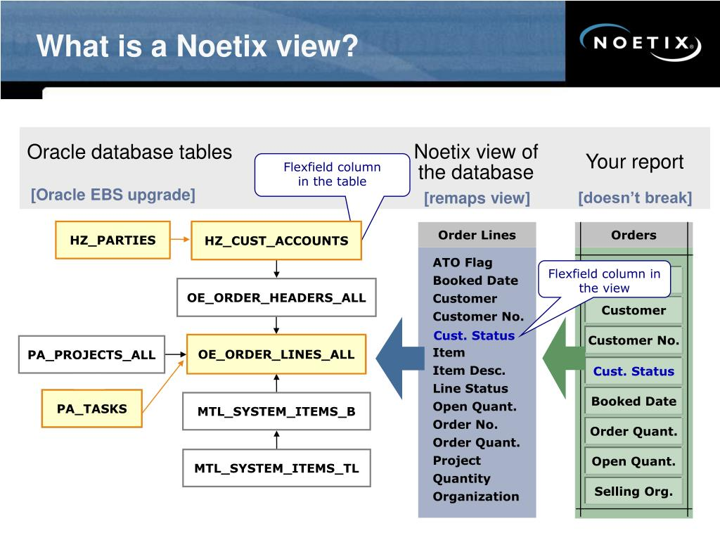 What is a Noetix view?