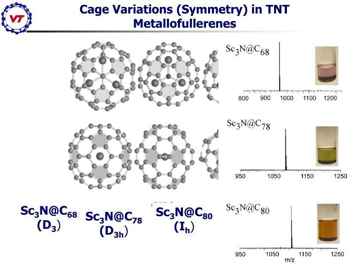 Cage Variations (Symmetry) in TNT Metallofullerenes