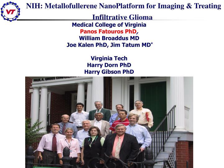 NIH: Metallofullerene NanoPlatform for Imaging & Treating