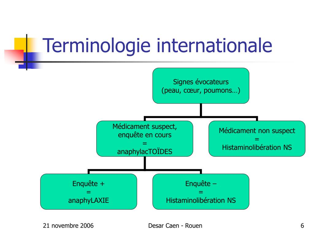 Terminologie internationale