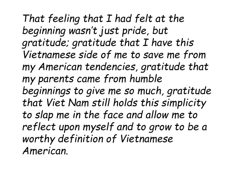 That feeling that I had felt at the beginning wasn't just pride, but gratitude; gratitude that I have this Vietnamese side of me to save me from my American tendencies, gratitude that my parents came from humble beginnings to give me so much, gratitude that Viet Nam still holds this simplicity to slap me in the face and allow me to reflect upon myself and to grow to be a worthy definition of Vietnamese American.