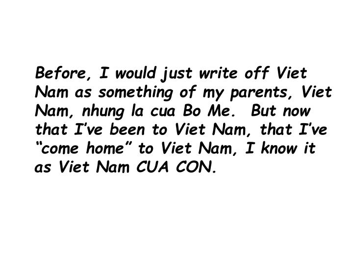 Before, I would just write off Viet Nam as something of my parents,