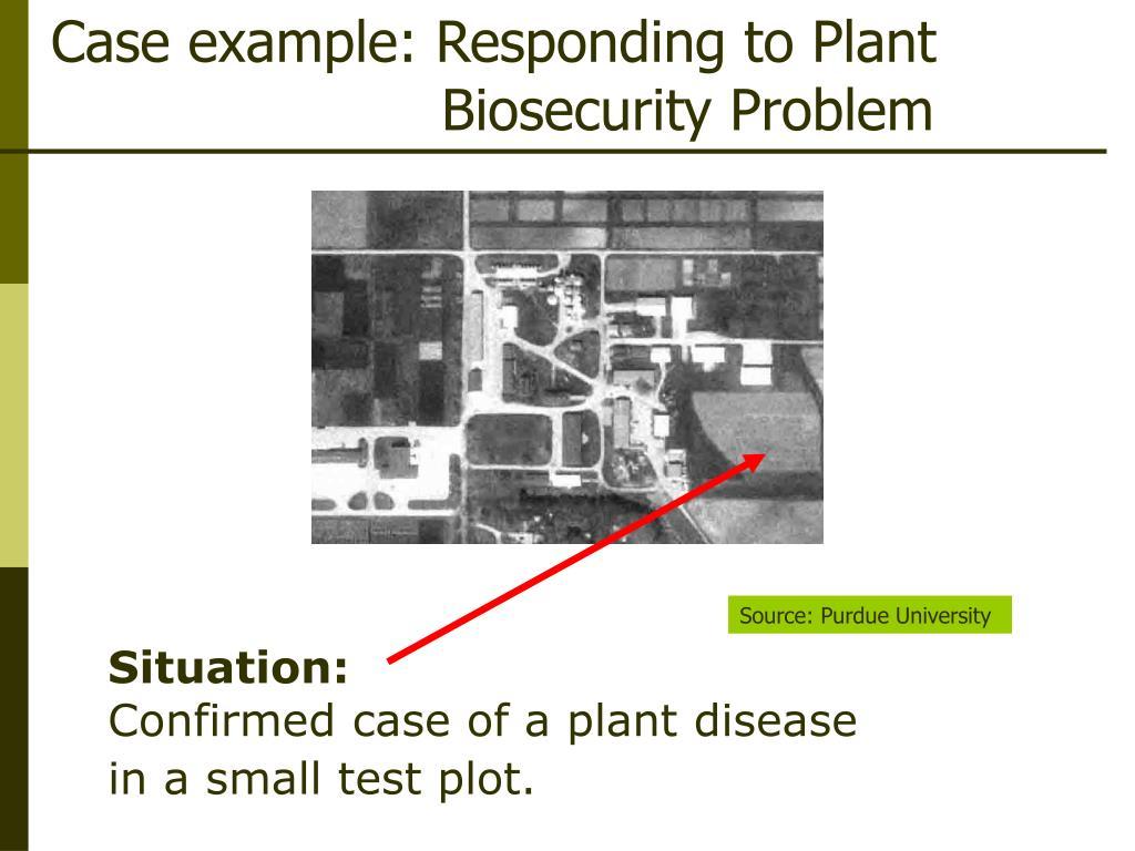 Case example: Responding to Plant