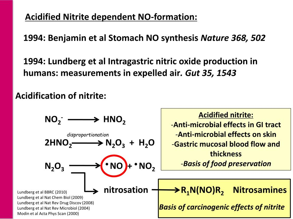 Acidified Nitrite dependent NO-formation: