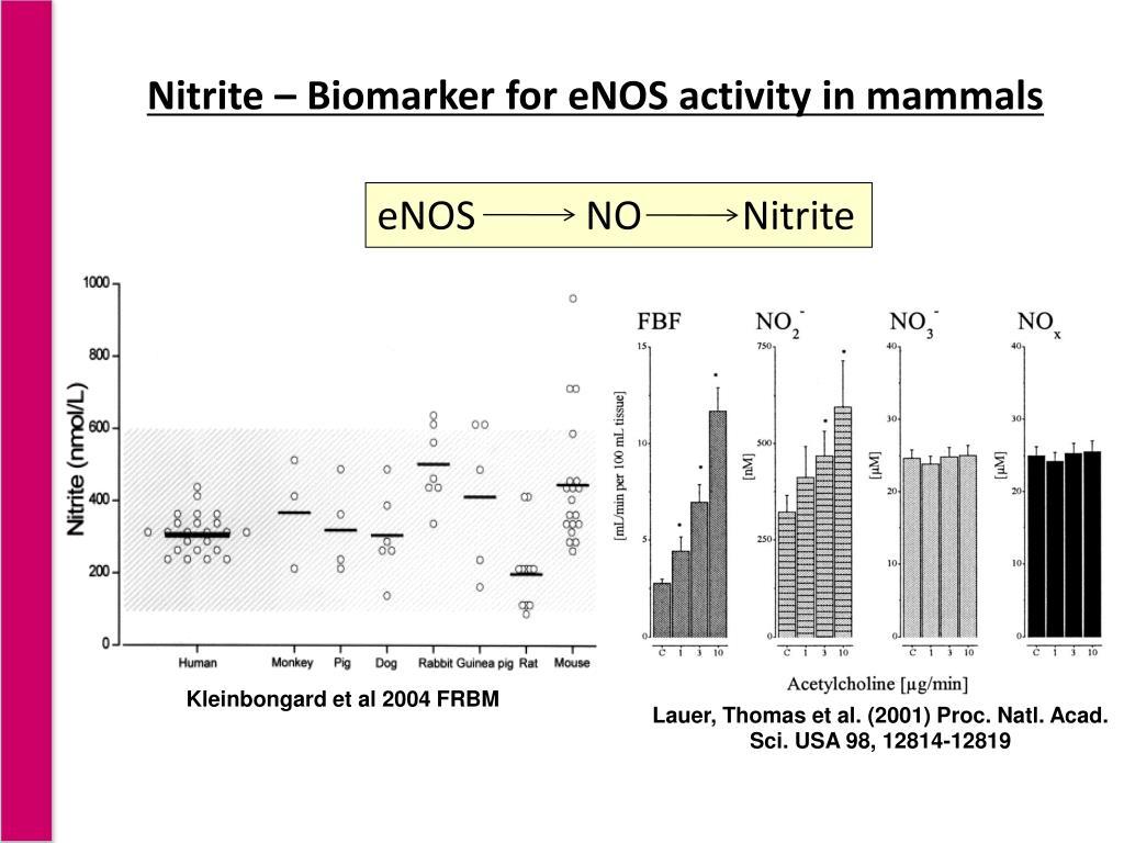 Lauer, Thomas et al. (2001) Proc. Natl. Acad. Sci. USA 98, 12814-12819