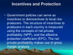 incentives and protection