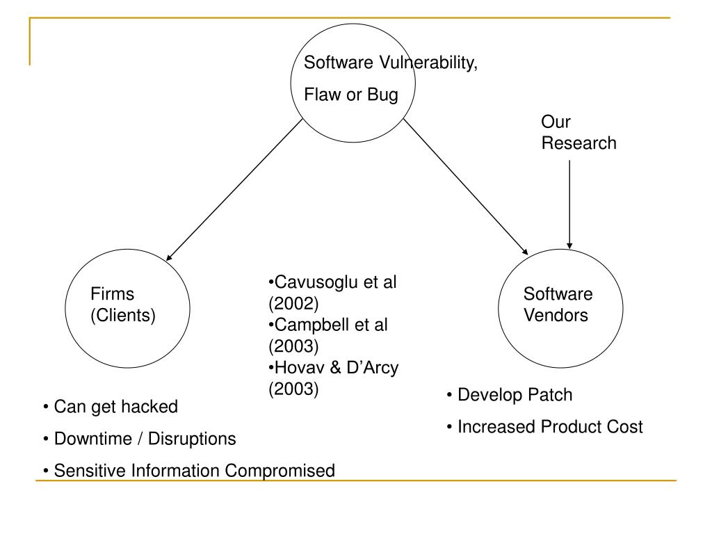Software Vulnerability,