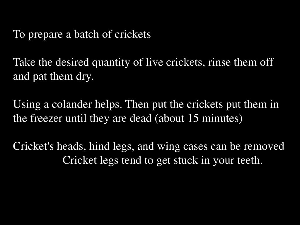 To prepare a batch of crickets