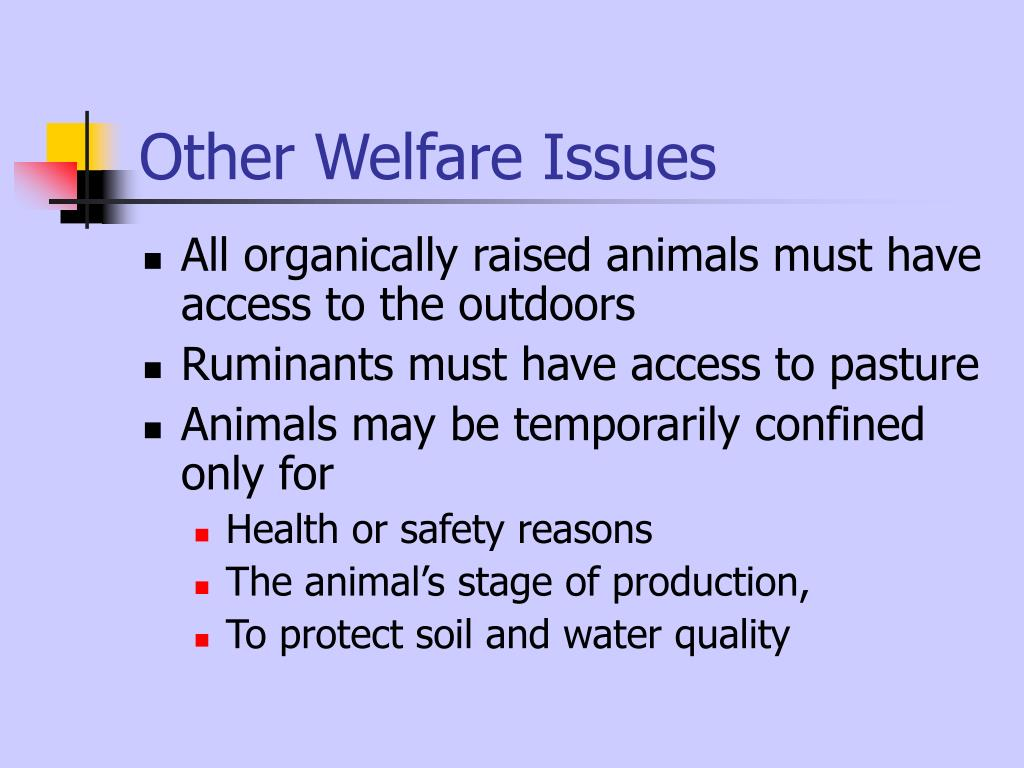 Other Welfare Issues
