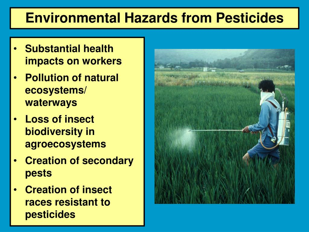 Environmental Hazards from Pesticides