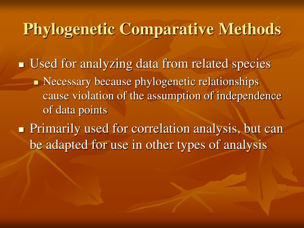 Phylogenetic Comparative Methods