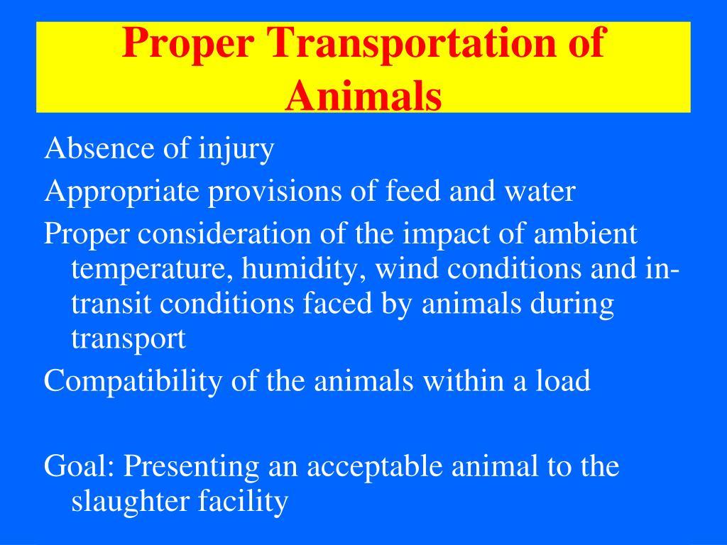 Proper Transportation of Animals