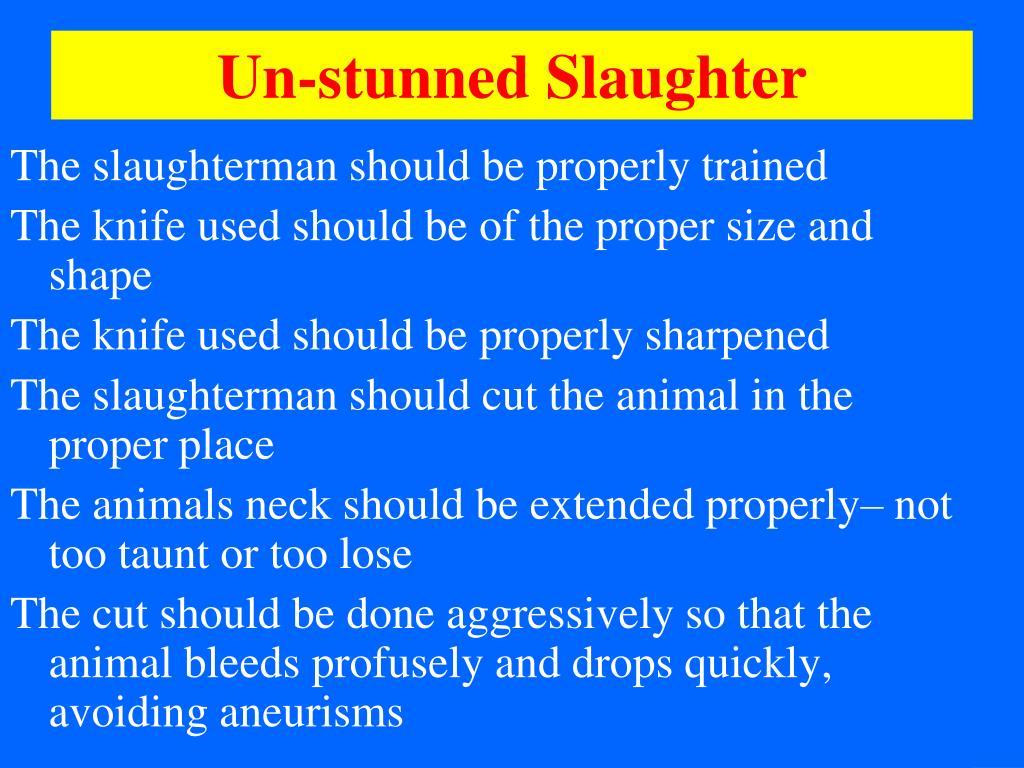 Un-stunned Slaughter