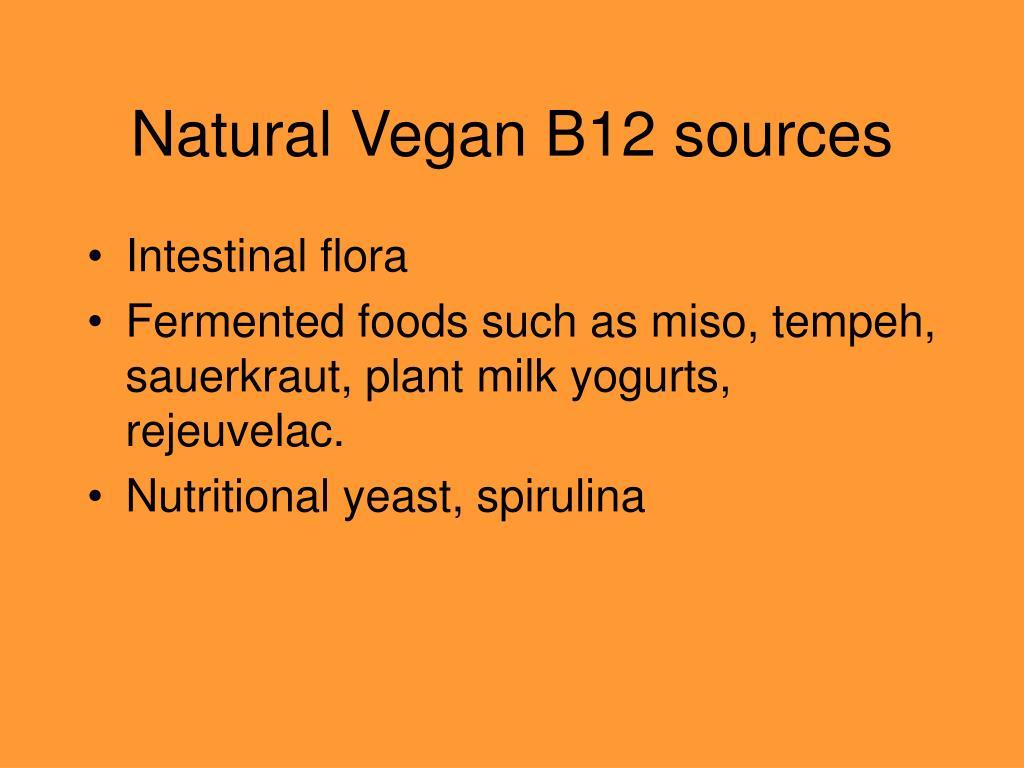 Natural Vegan B12 sources