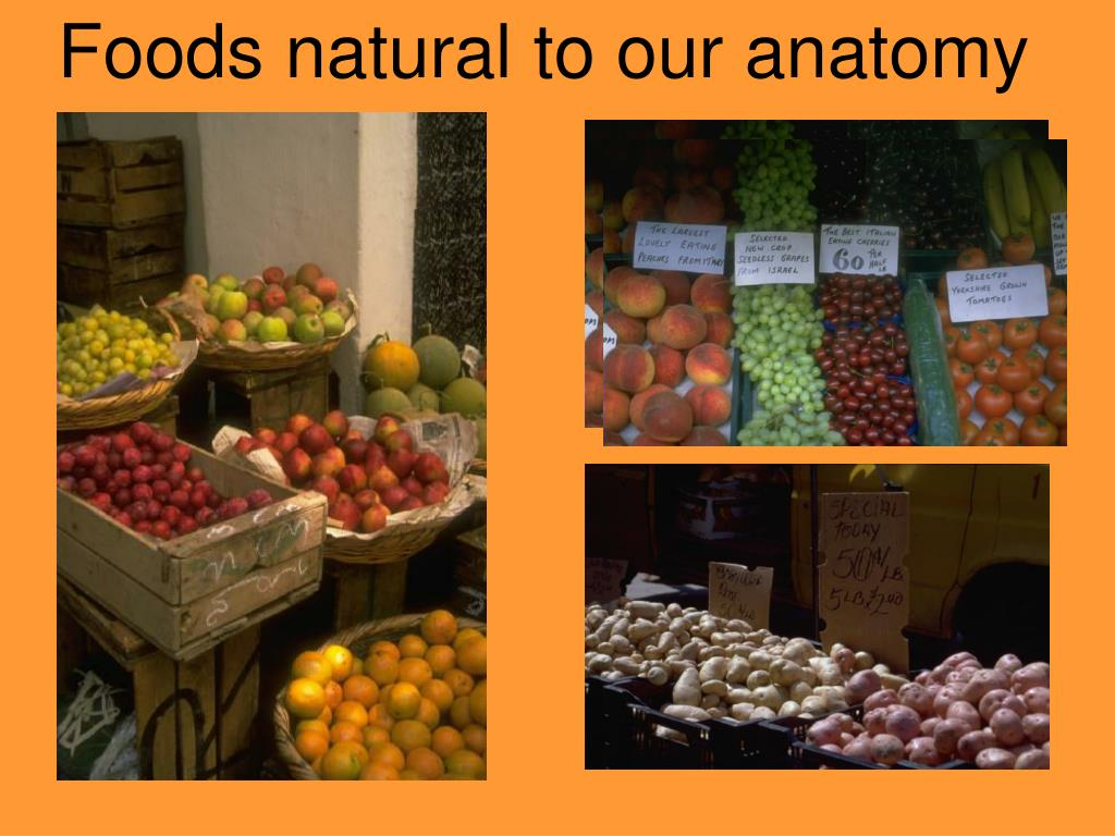 Foods natural to our anatomy