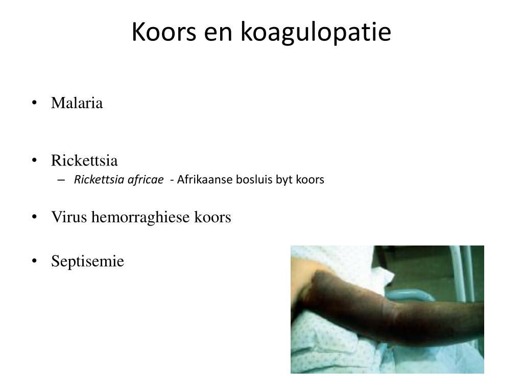 Koors en koagulopatie