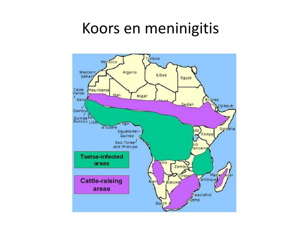 Koors en meninigitis