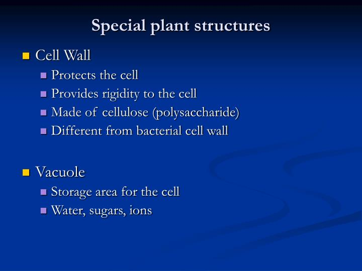 Special plant structures