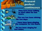 present perfect continuous14